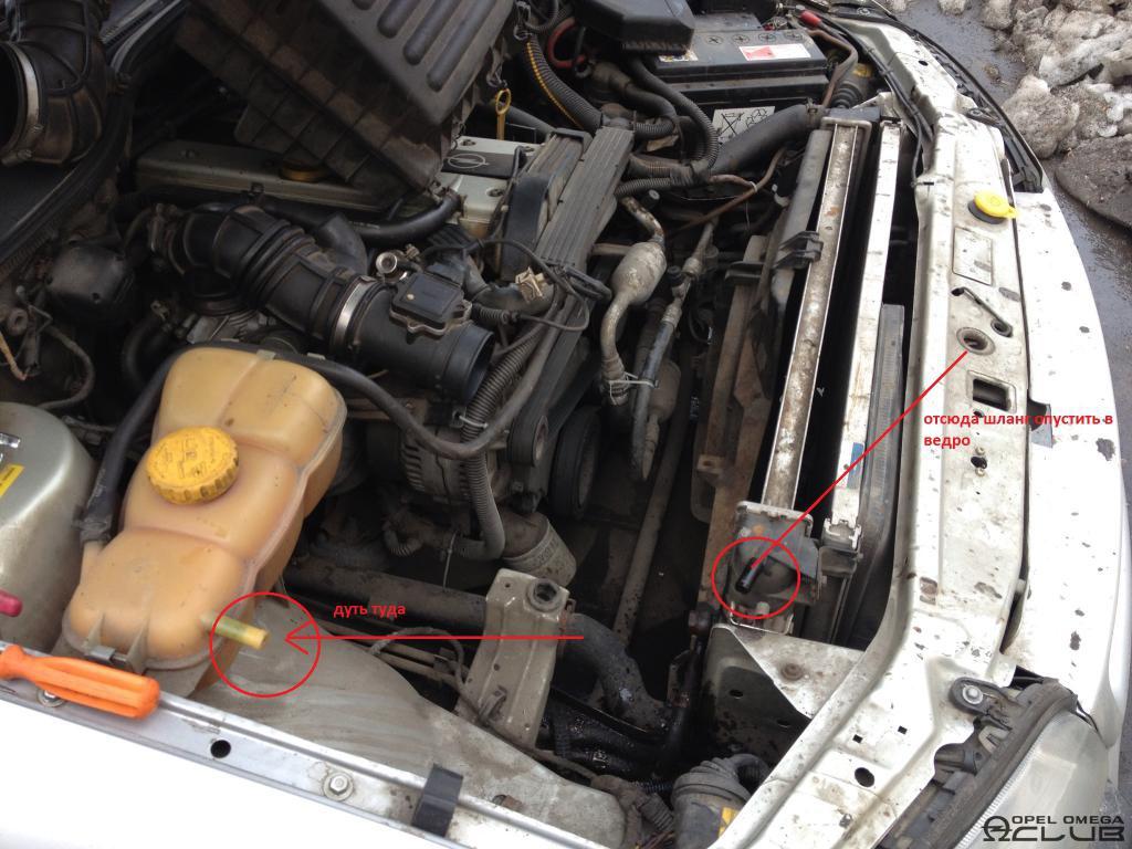 опель омега 1996 2.5 радиатор масло